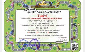 Смоленские педагоги дополнительного образования стали победителями международного конкурса
