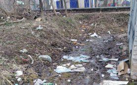 Смолянам приходится пробираться через горы мусора, чтобы попасть в детские сады
