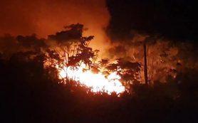 Смоленские пожарные отвоевали у огня детский лагерь