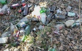 «Бьют об забор бутылки». Пейзаж у детского сада Смоленска шокировал пользователей Сети
