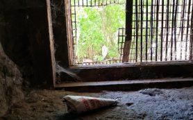 В смоленском райцентре дети чуть не отравились ядом для крыс