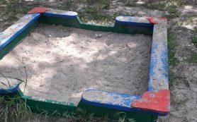 «А рядом дохлые мыши валяются!» Смоляне пожаловались на детскую площадку