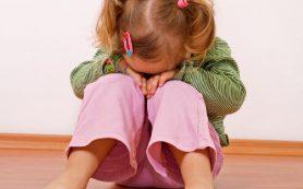 Следователи проверят частный детсад в Смоленске после жалобы матери
