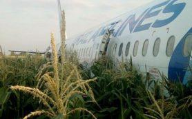 На борту самолета, совершившего аварийную посадку на кукурузное поле, были смоленские дети