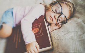 5 правил для родителей в воспитании ребенка