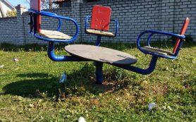 «Заросшая и грязная». В Смоленске детская площадка «утонула» в мусоре