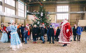 В Смоленске прошел благотворительный детский праздник «Добрая елка-2020»