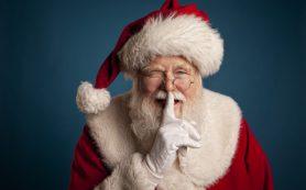 Почему нельзя говорить ребенку, что подарок принес Дед Мороз