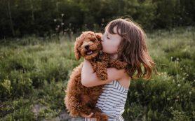 Как воспитать ребенка добрым: 4 простых совета